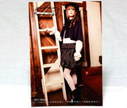 Victorian Maiden March 2013 Postcard